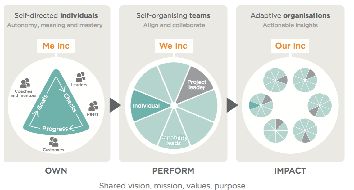PlanDo Adaptive Work Model
